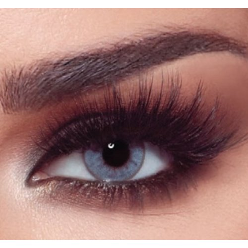 Bella Bluish Gray One Day Color Contact Lenses